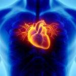 Enfektif Endokardit: Klinik, Tanı ve Tedavi Yaklaşımları